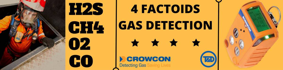 Gas Detection - H2S CH4 O2 CO - Crowcon Gas Detectors
