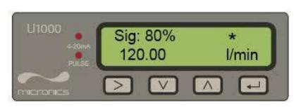 Micronics U1000 – Permanent Ultrasonic Liquid Flow Meter