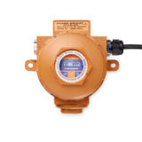 Gas Detectors for Flammable & Toxic Gases in Hazardous Locations | Crowcon Xgard Bright